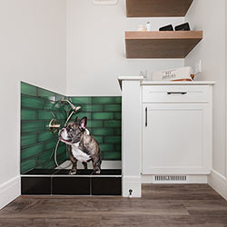 Personal pet wash station – Pacesetter Homes' front garage showhome